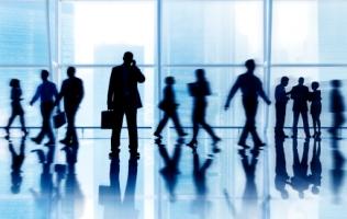organization-developmental-consulting